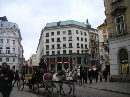 Viyana Looshaus