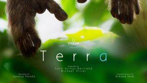 Terra-belgesel